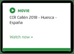 CCR Callen 2018