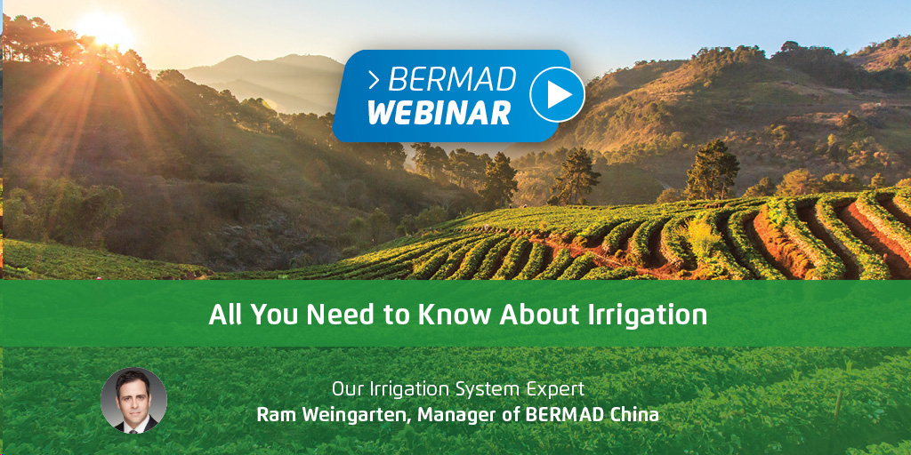 All You Need to Know About Irrigation